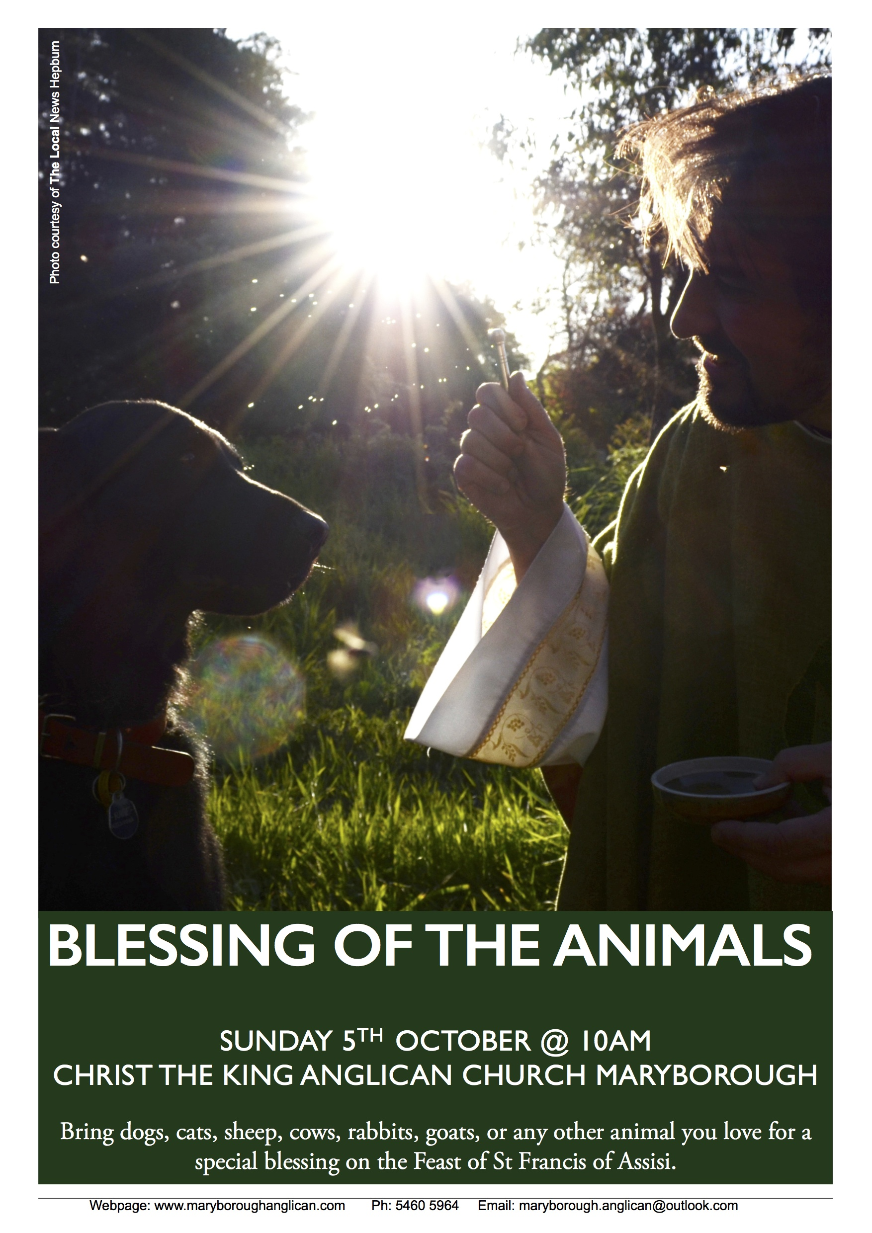 blessing of the animals  u2013 feast of st francis of assisi