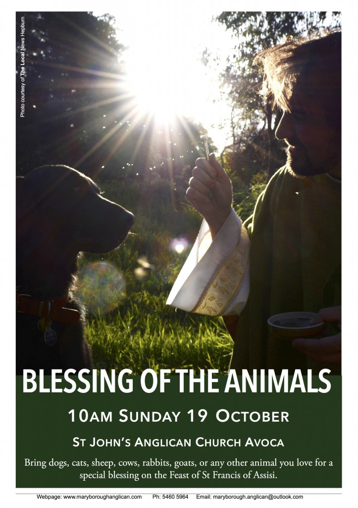 Blessing of the Animals AVOCA 2014